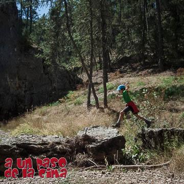 Cañón del Río Lobos (Hontoria del Pinar – Puente de 7 Ojos)