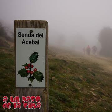 Acebal de Garagüeta, circular bajo la niebla